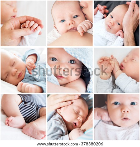 Collage newborn baby's photos
