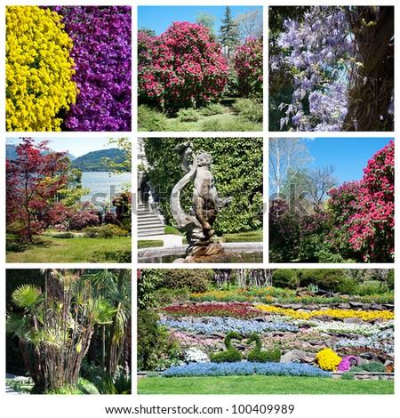 Collage of beautiful garden