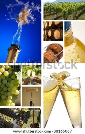 collage of champagne pictures