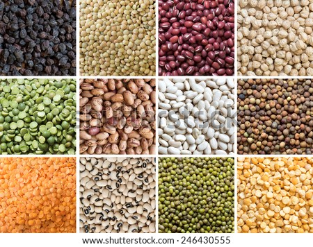 Collage of 12 different legumes - lentils, beans and peas