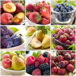 Collage of different raw fruit and berries photos