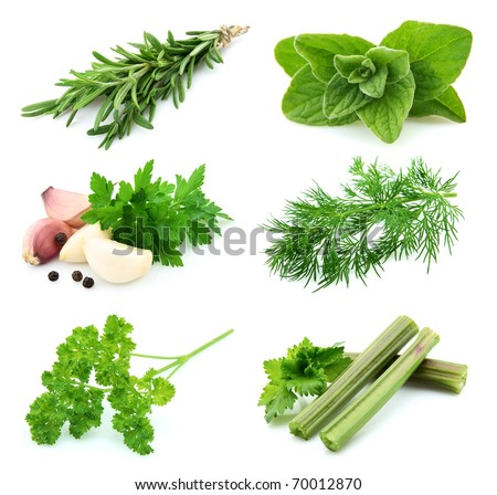 Collage of  green and juice spice on white background.