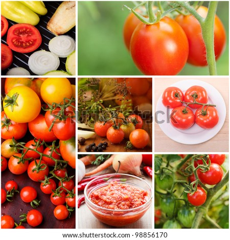 Collage of growing tomatoes and food