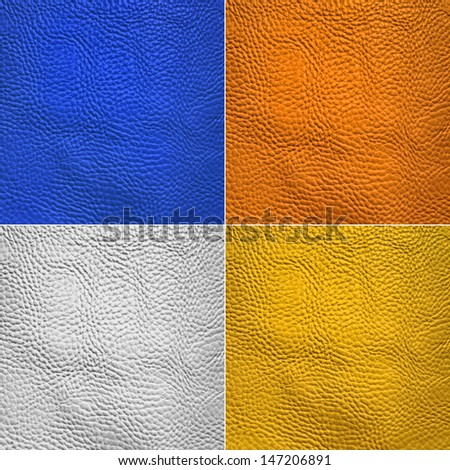 Collage of skin animal texture