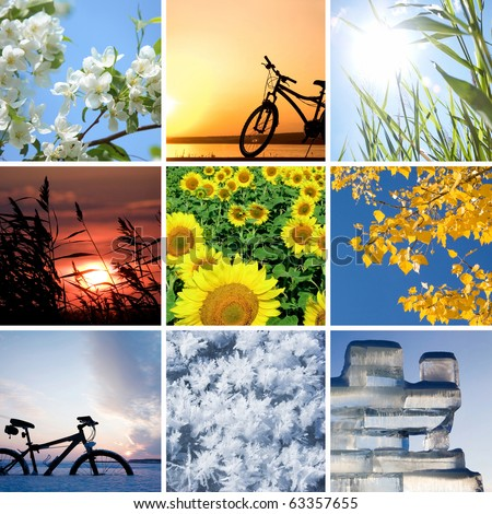 Collage of the four seasons: spring, summer, autumn, winter