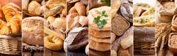 collage of various types of fresh baked bread