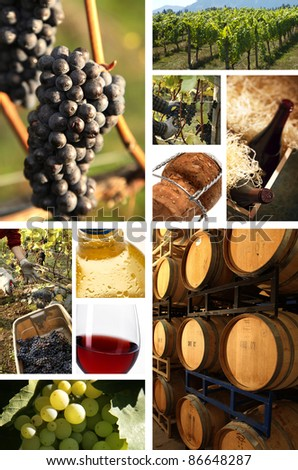 collage of wine pictures