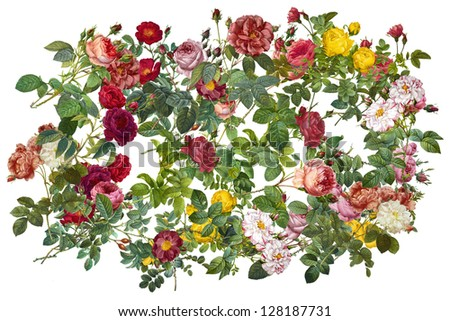collage with floral images