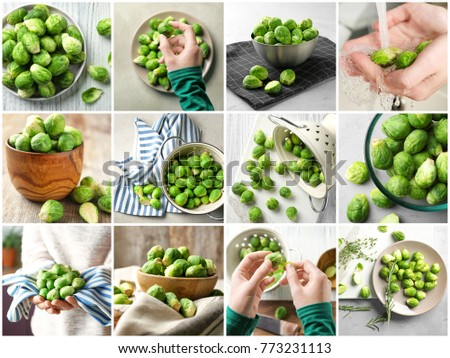 Collage with fresh brussel sprouts #773231113