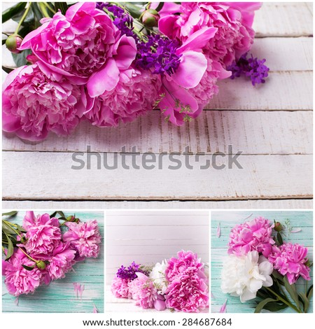 Collage with fresh pink peonies flowers on white painted wooden background. Selective focus.