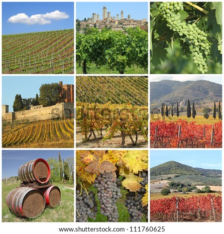 collage with scenic images of tuscan vineyards, Italy, Europe