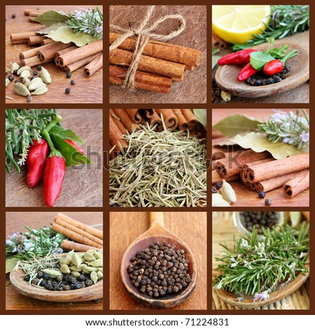 Collage with Spices