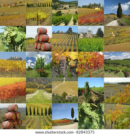 collage with tuscan vineyards, Italy, Europe