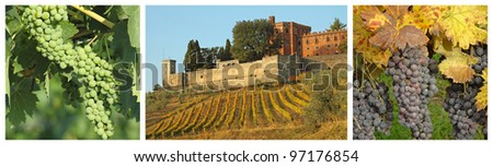 collage with vineyards and castle, Brolio, Tuscany, Italy, Europe