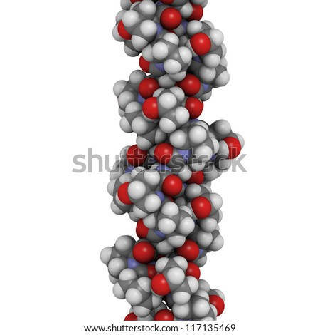 Collagen model protein. Collagen adopts a characteristic triple helix structure. Collagen is a major component of many tissues, including skin, bone and cartilage.