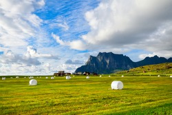 Collected hay bales on the field with beautiful sky and moutain in the background at Lofoten islands, Norway. Hay bale are a feed source for ruminant animals made from a variety of forage crops