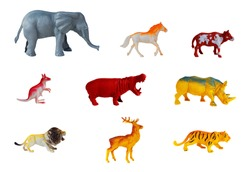collection animals concept model toy on white background.