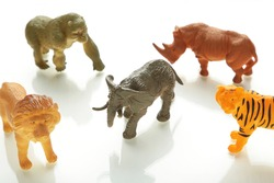 Collection animals concept model toy on white background. Zoo
