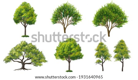 Collection of abstract watercolor green tree side view isolated on white background  for landscape plan and architecture layout drawing, elements for environment and garden, green grass illustration