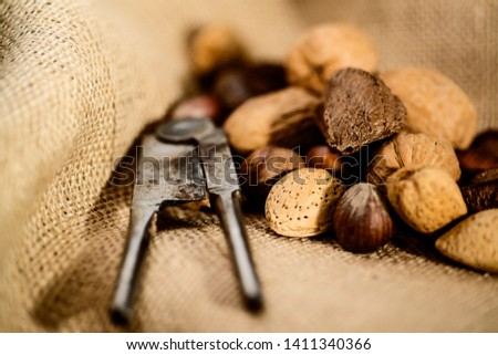 Collection of almonds, hazel nut, wal nut, and Brazil nut with nut cracker on canvas background