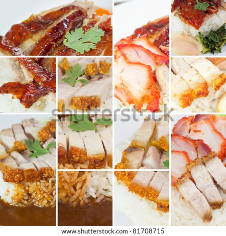 Collection of  BBQ Pork and Crispy Pork with Rice. background template for design work
