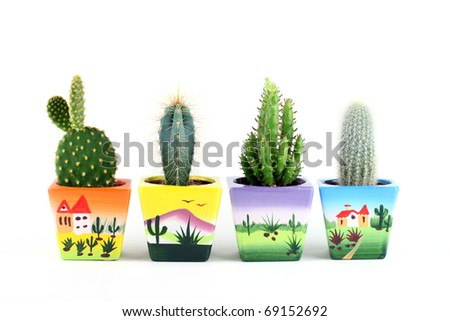 Collection of cactuses isolated on white.