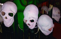 Collection of cardboard Skulls in Cemetery, Horror human head skull hanging in wall. Selective focus with Blurry
