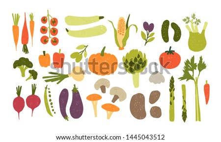 Collection of colorful hand drawn fresh delicious vegetables isolated on white background. Bundle of healthy and tasty vegan products, wholesome vegetarian food. Flat cartoon illustration. #1445043512