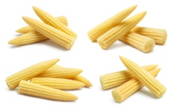 Collection of delicious baby corn, isolated on white background