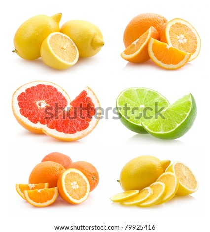 collection of different citruses