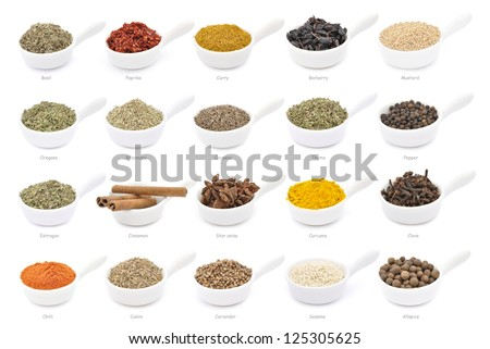 Collection of different spices with names in white pans, isolated
