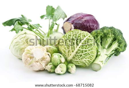 Collection of different varieties of cabbage on a white background.
