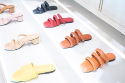 Collection Of Different Women's Shoes on a solid background. Footwear, Fashion, Objects