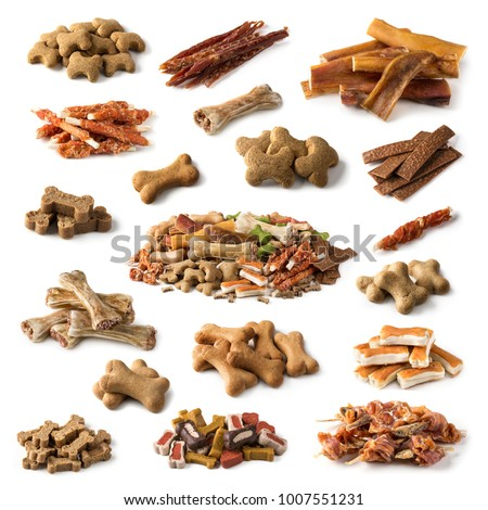 Collection of dog snacks isolated on a white background
