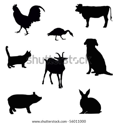 collection of farm animal silhouettes isolated on white - stock photo
