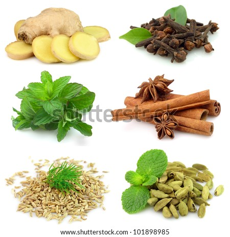 Collection of fragrant spices on white