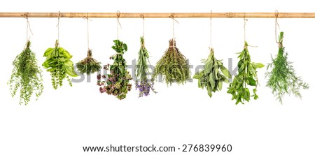 Collection of fresh herbs hanging isolated over white background. Bundle of basil, sage, dill, thyme, mint, marjoram, lavender. #276839960