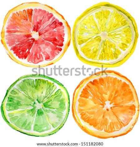 collection of fresh ripe orange, lemon, lime, grapefruit