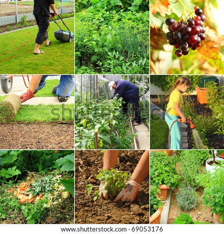 Collection of garden images - composting, cutting grass, watering, - stock photo