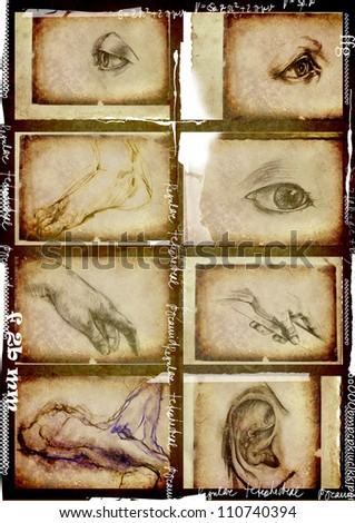 collection of hand drawings - body parts - stock photo