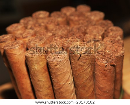 Collection of handmade cigars