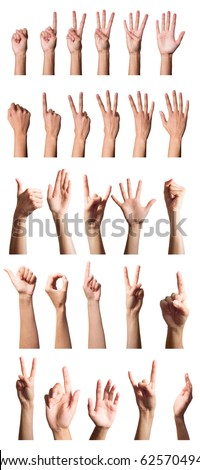 Collection of hands over white
