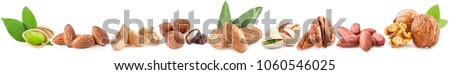 Collection of nuts isolated on white background