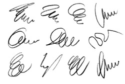 Collection of pencil strokes imitating signatures, isolated on white background