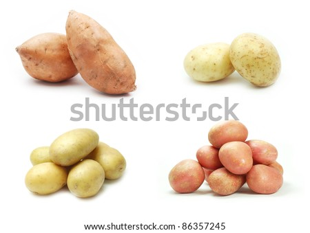 Collection of potatoe varieties on white background