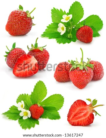 collection of red strawberry fruits isolated on white background