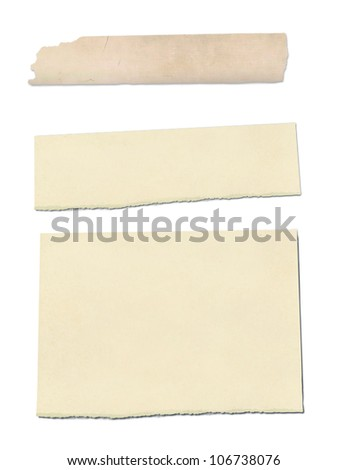 collection of ripped pieces of paper