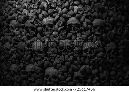 Collection of skulls and bones covered with spider web and dust in the catacombs. Numerous creepy skulls in the dark. Abstract concept symbolizing death, terror, and evil. stock photo