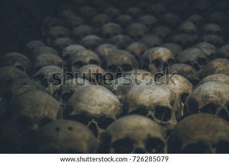 Photo of  Collection of skulls covered with spider web and dust in the catacombs. Rows of creepy skulls in the dark. Abstract concept symbolizing death, terror, and evil.