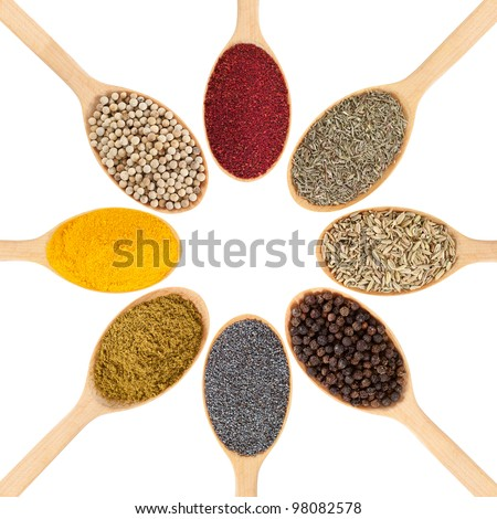 Collection of 8 spices on a wooden spoon. isolated on a white background